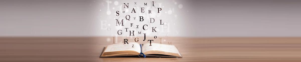 literatur-bibliothek-medienpaedagogik-medienhaus