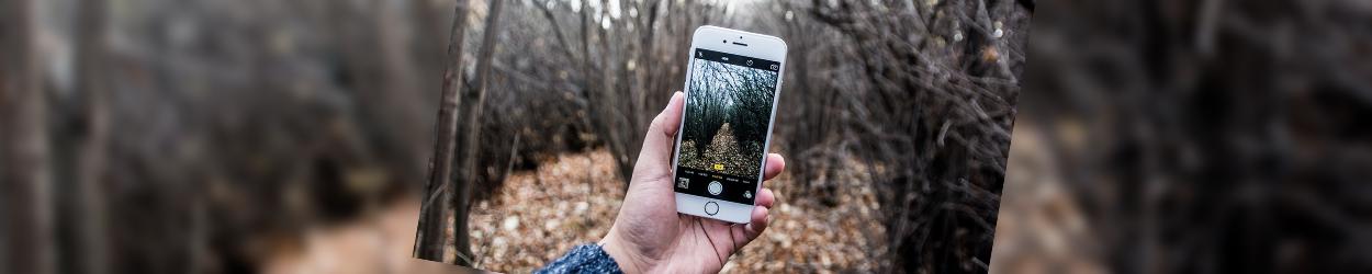 Smartphone in einer Hand, welches Herbstweg filmt.